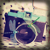 Photography 10x10cm Vintage Camera Diana F with some by SaraHops