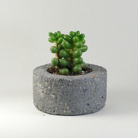 Mini pot -  rustic