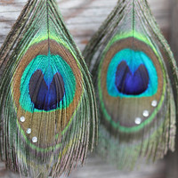 Peacock Feather Earrings : Rhinestone Crystal Accented Peacock Feather Earrings