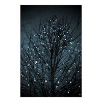 &quot;December&quot; photography poster from Zazzle.com