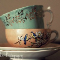 Tea Cups - 8x10 Fine Art Photograph | Luulla