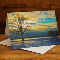 Room To Grow Greeting Card by FairchildPhotography on Etsy