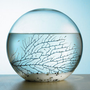 The Self Sustaining Ecosphere - Hammacher Schlemmer