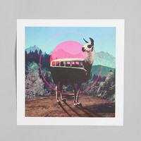 Ali Gulec For Society6 Llama Art Print