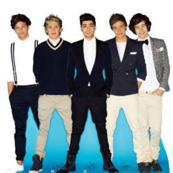 Amazon.com: AG1D2 One Direction Cardboard Cutout Standee Standup: Home & Kitchen