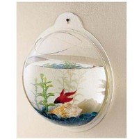Wall Mount Hanging Beta Fish Bubble Aquarium Bowl Tank