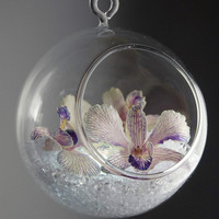 "4"" Hanging Clear Glass Ball"