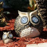 Smart Solar Garden Solar Owl Accent Lights- Set of 2 | www.hayneedle.com
