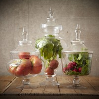 Apothecary Botanical Jars - Set of Three