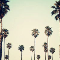 California  Art Print by Bree Madden  | Society6