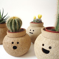 Hairy Babes Plant Pot: ISAMU