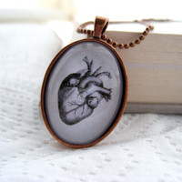 The Heart Necklace Human Anatomy by ivcreations55 on Etsy