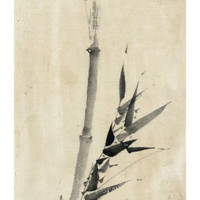 Japan: Bamboo, C1830-1850 Giclee Print by Hokusai Katsushika