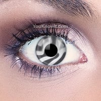Zebra Contact Lenses | Coloured Contact Lenses