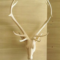 Carved Wood Trophy Head - Stag