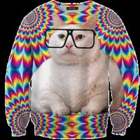 Mr. Gugu &amp; Miss Go  Uncle cat sweater