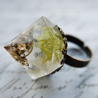 Steampunk Statement Ring Contemporary Resin Jewelry Diamond Seashell Nature Rock OOAK Unisex