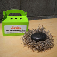 Pet rock  Rocky  the pet that doesn't poop  gag gift by Space87