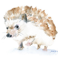 Hedgehog Watercolor Note Card Set by SusanWindsor on Etsy