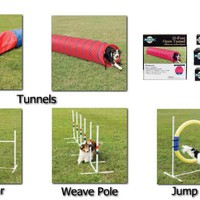 Dog training agility equipment on sale