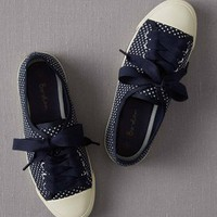 Spotty Canvas Plimsolls (Navy Pinspot)