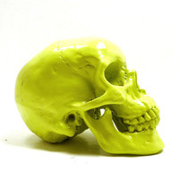 neon skull, anatomy decor, lime green, skull head, neon tribal home decor, neon home accents