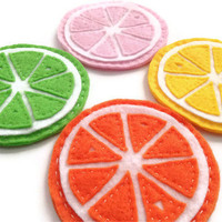 Citrus Fruit Slices Felt Coasters Hand Sewn Mug Rugs