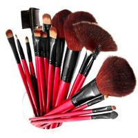 SHANY Professional 13-Piece Cosmetic Brush Set with Pouch, Set of 12 Brushes and 1 Pouch, Red: Beauty