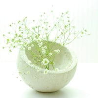 Baby Earth Concrete Planter in White  New Lower by Conceptions3D