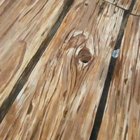 Gum Between the Planks Art Print by larkinjane