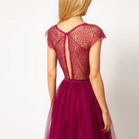 ASOS Skater Dress with Cobweb Lace