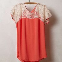 Anthropologie - Lace Penumbra Blouse