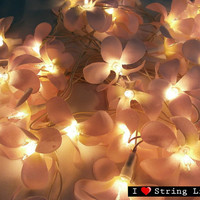 35 of Soft Pink Frangipani Flower String Lights For Wedding and House decoration (35 Flowers/Set)