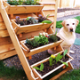 "36"" large planters raised bed vegetable garden for herb, tomato, flower, and strawberry gardening - Free Shipping"