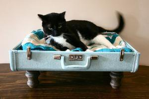 Upcycle  Suitcase Pet Bed  Blue by vintagerenaissance on Etsy