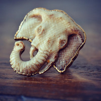 ELEPHANT /// Carved Bone Electroformed Ring /// Gold /// White /// size 6