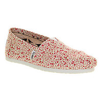 Toms CLASSIC SLIP ON DITSY FLORAL BERRY EXCLUSIVE Shoes - Womens Flats Shoes - Office Shoes