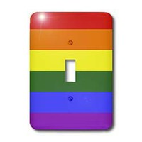 3dRose LLC lsp_37605_1 Rainbow Flag Gay Lesbian Pride Icon, Single Toggle Switch
