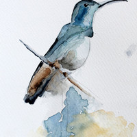 Watercolor Blue Bird. painting . Bird series / Desing painting.
