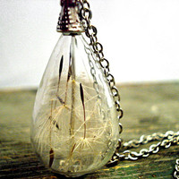 Delicate handblown glass teardrop filled with real dandelion seeds, antique silver colored necklace