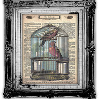 BIRDCAGE BIRDS Dictionary Art Print Antique by FoxHunterStudios