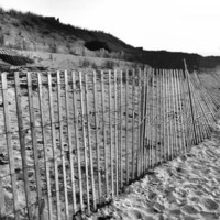 Cape Beach Fence - 11x14 - Photography - Black &amp; White or Color