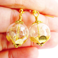 Real Dandelion Seed Glass Orb Earrings In Gold Lucky You