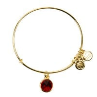 Alex and Ani January Birthstone Charm Bangle