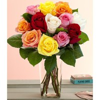 One Dozen Rainbow Mother's Day Roses (with FREE glass vase) - Flowers