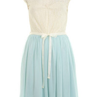 Mint Lace Skater Dress - Skater Dresses  - Dress Shop  - Miss Selfridge US