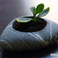 zen garden flower planter engraved beach stone by Mihulli on Etsy