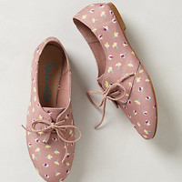 Nickerie Oxfords