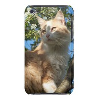 Sahara Cat In A Tree iPod Touch Case from Zazzle.com