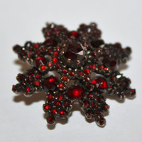 Victorian Brooch Bohemian Rose Cut Garnet  GF  Star 1900s Fine  jewelry